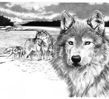 Wolves at Rainey Lake by Susana Weber