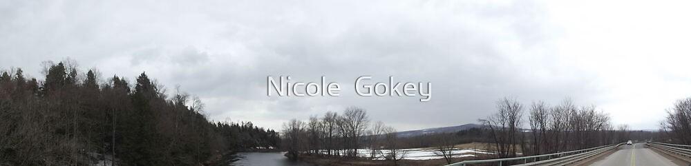 Black River by Nicole  Gokey