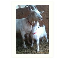 Goat Kisses Art Print