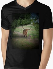 Cow Talk At The Fence Mens V-Neck T-Shirt