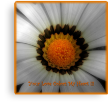The Colors Of My Heart ~ Part Two Canvas Print
