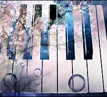 The Magic Beyond The Keys by Stephanie Rachel Seely