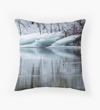 Bufflehead Duck and Ice Formation, Niagara River, Ontario Throw Pillow