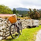 Bicycle against garden wall by Jim Orr
