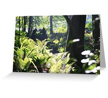 The Deeping Wood. Stackpole. Greeting Card