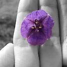 a splash of purple by Loretta Marvin
