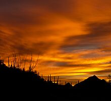 Sunrise Over Tucson Mountains by Linda Gregory