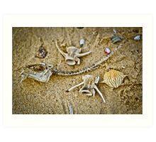 Sea Skeletons Art Print