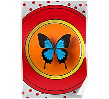 Blue Butterfly On Red Plate Poster