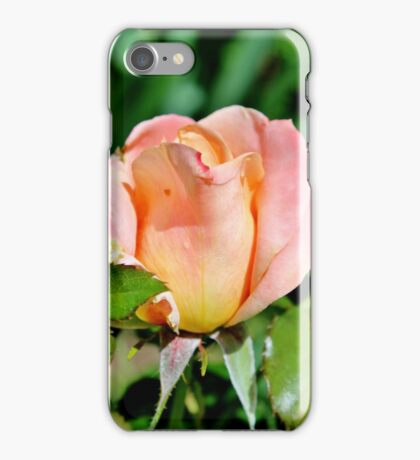 A Fondness for Roses iPhone Case/Skin