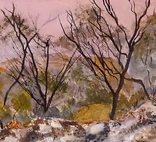 Mist in the Grampians National Park by Kay Cunningham