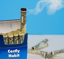 Costly Bad Habit by Trudy Wilkerson