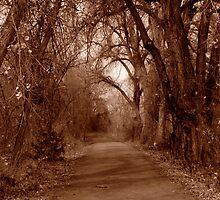 Lonely Walk - Arkansas River Walk by Josh Hadley
