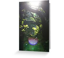 Woodland Refraction Greeting Card