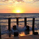 Late Summer Sunset 4 by Debbie  Maglothin