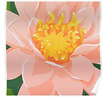 Tranquil Water Lily Poster