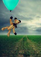 Horatio's Adventure.... by Carol Knudsen