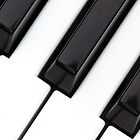 Piano keys by sprucedimages