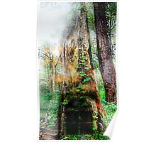 The Door Of the Enchanted Tree (fairy land)  Poster