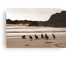Day out at the Beach Metal Print