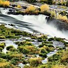 Sherar Falls Deschutes River Oregon by Don Siebel