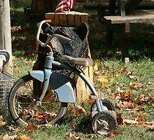 Old Tricycle by mikej
