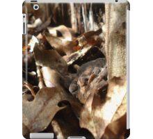 Master of Camouflage iPad Case/Skin