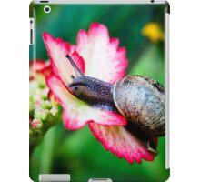 Snail on a Hydrangea iPad Case/Skin