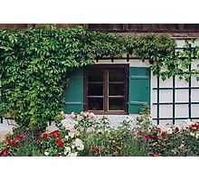 The Charming Garden Photographic Print
