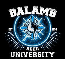 Balamb university by Soulkr