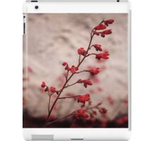 Red zen spirit iPad Case/Skin