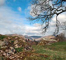 Lake District by Victoria Kidgell