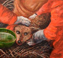 Pooch by Randy  Burns