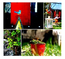Small Things Photographic Print