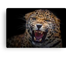 Naked Aggression Canvas Print