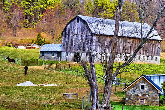 Horsing Around on the Farm by Trudy Wilkerson
