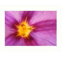 Purple and yellow flower macro abstract Art Print