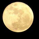 Moon by jimkoul