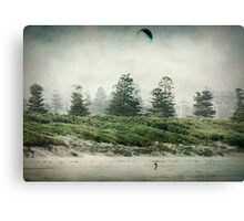 ~ Wind Chaser ~ Canvas Print