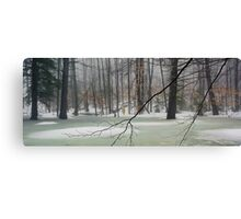 Vernal Pool - Early April Canvas Print