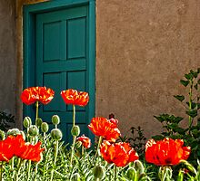 Fire Orange Poppies & Turquiose Blue Door by ☼Laughing Bones☾