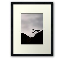Life's little ups and downs... Framed Print