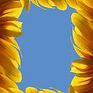 Sunflower frame by Digital Editor .