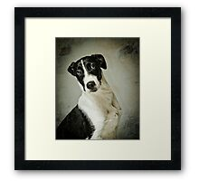 Who Could Resist Me? Framed Print
