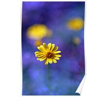 Wildflower Magic Poster