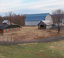 Ole farmstead  by Diane Trummer Sullivan