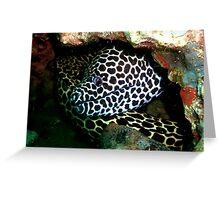 Honeycomb Moray Greeting Card
