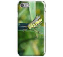 Little hopper iPhone Case/Skin