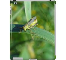 Little hopper iPad Case/Skin