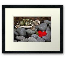 Turtle's  Pebble Garden Framed Print